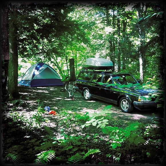 volvo-240-camping-woods.jpg